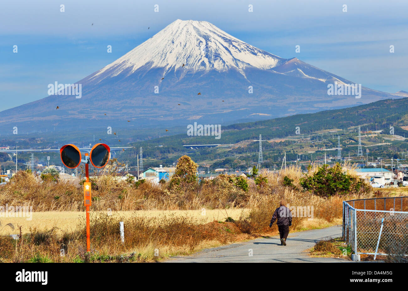 Farmland below Mt. Fuji in Japan. - Stock Image
