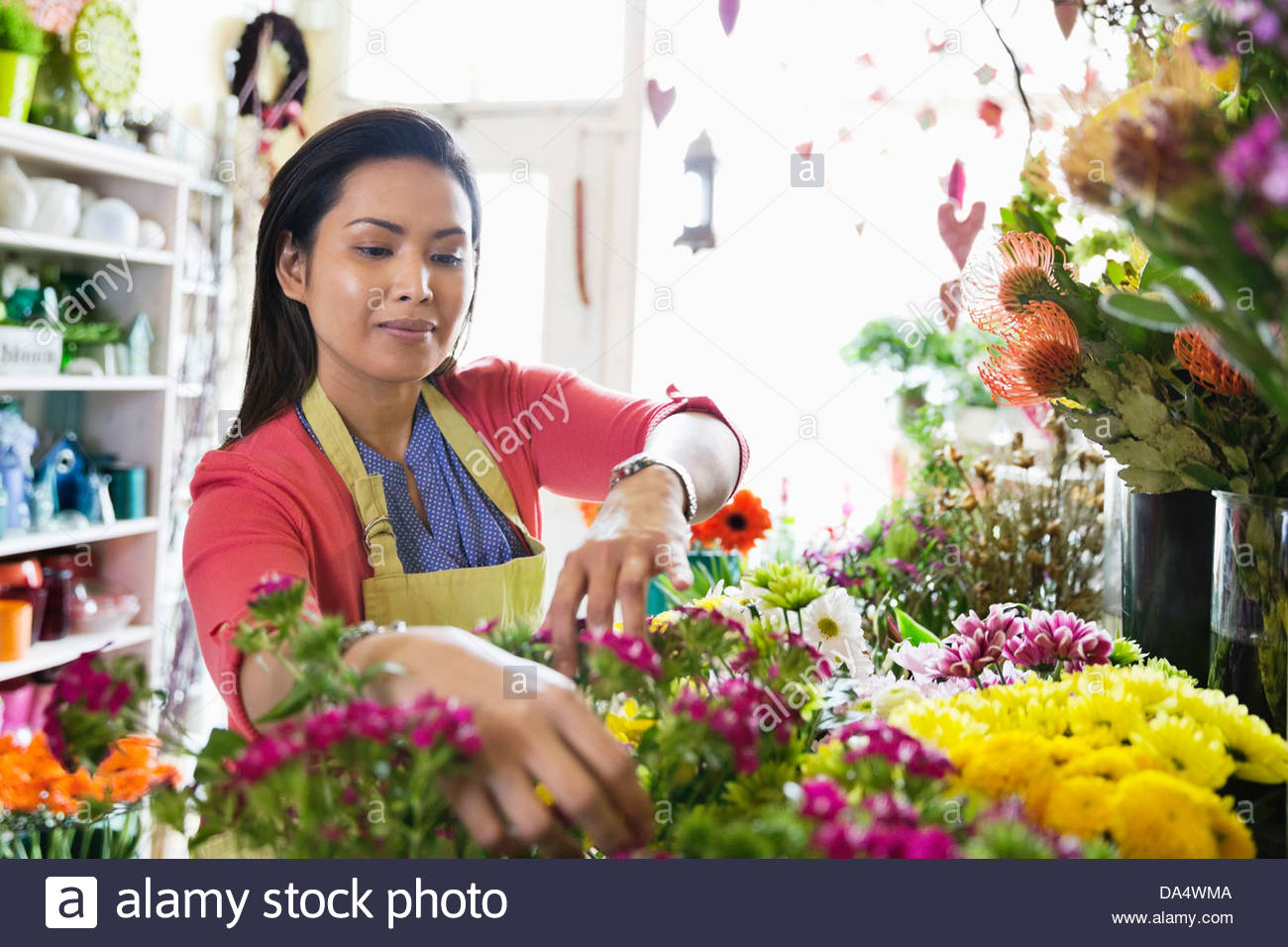 Female florist arranging flowers in flower shop - Stock Image