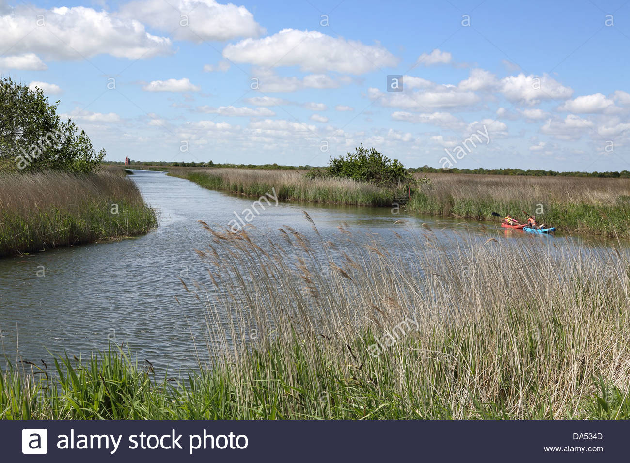 martham broad near west somerton in Norfolk - Stock Image