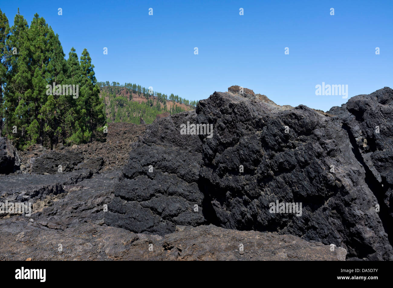 Solidified magma from the lava flow that erupted from Chinyero in 1909 on Tenerife, canary islands, Spain - Stock Image