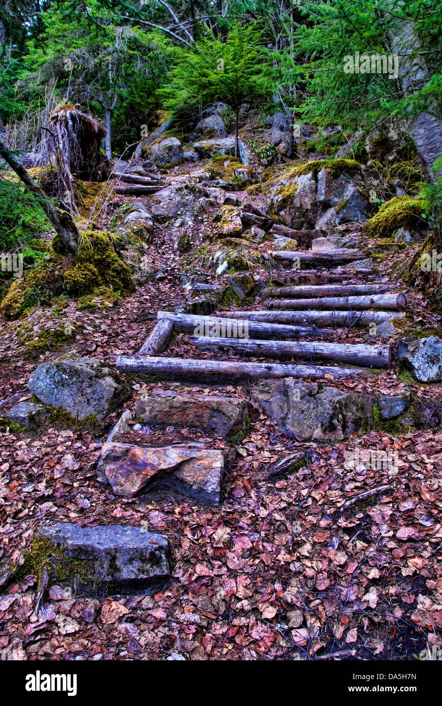 chilkoot trail, national, historic, site, skagway, Alaska, USA, United States, America, - Stock Image