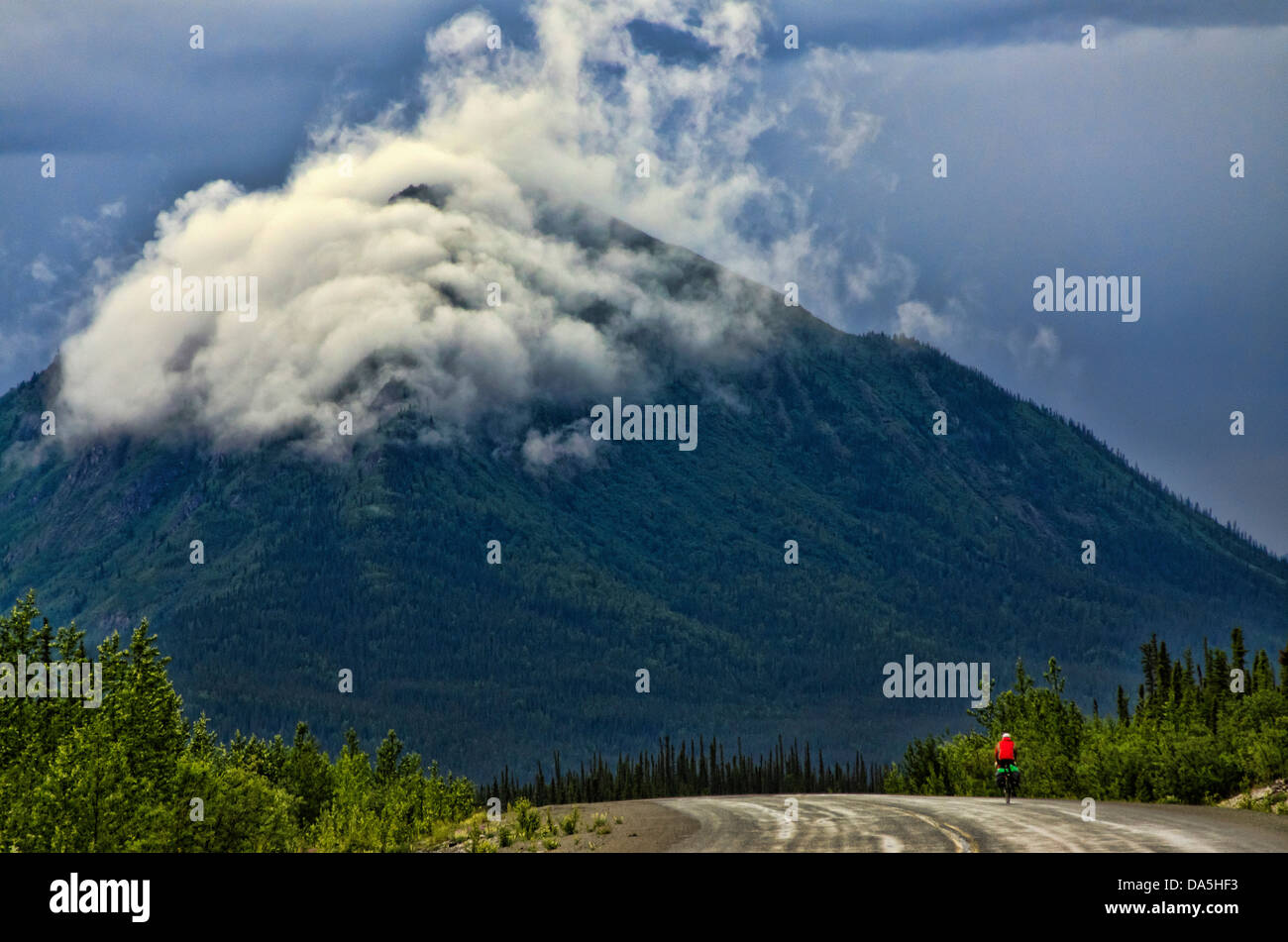 bicyclist, Alaska, highway, mountains, kluane, national, park, road, USA, United States, America - Stock Image