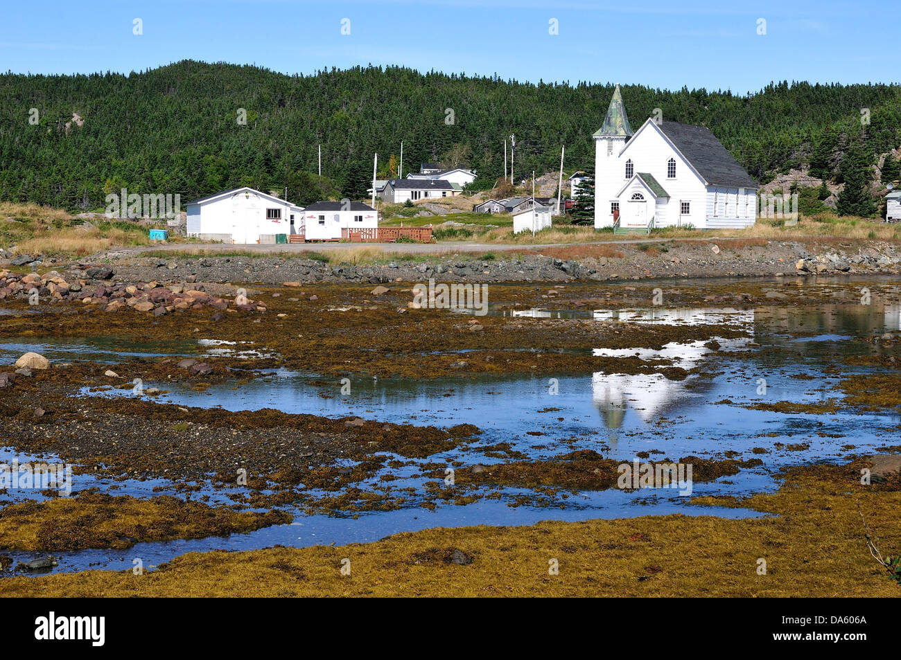 Fishing Village, North Coast, Newfoundland, Canada, village, water, forest - Stock Image