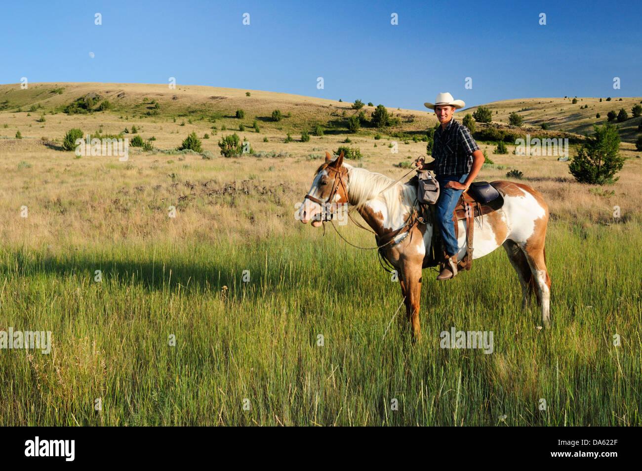 Pacific Northwest, Oregon, USA, United States, America, riding, horseback, sport, horse, ranch, cowboy, grass, green - Stock Image