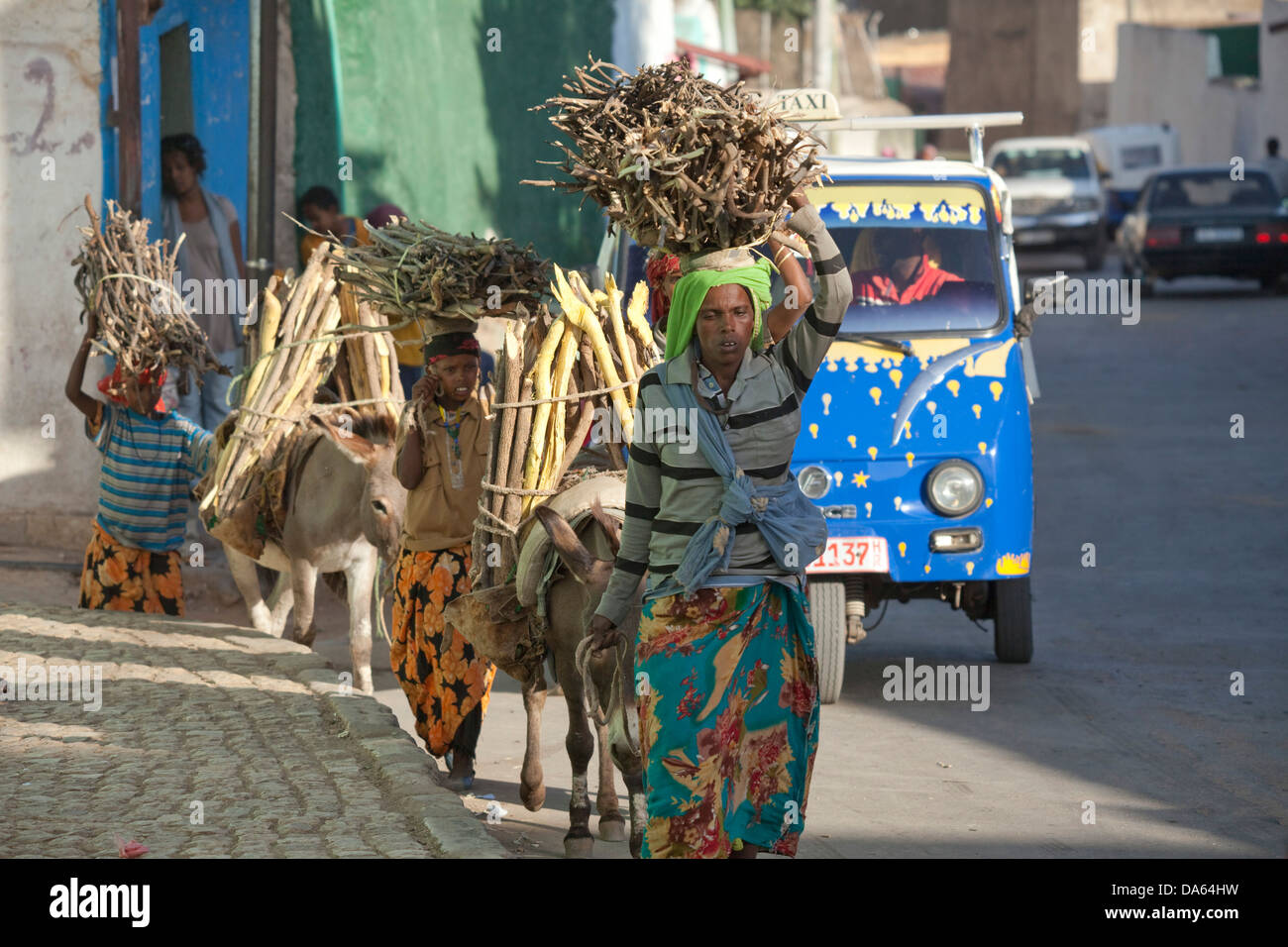 Wood, transport, Harar, Ethiopia, UNESCO, world cultural heritage, Africa, town, city, donkeys - Stock Image