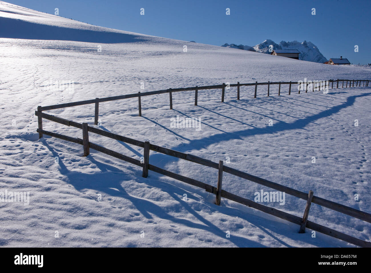 Hedge, snow, mountain, mountains, agriculture, canton, Appenzell, Innerroden, Appenzell area, Alpstein, Säntis, - Stock Image