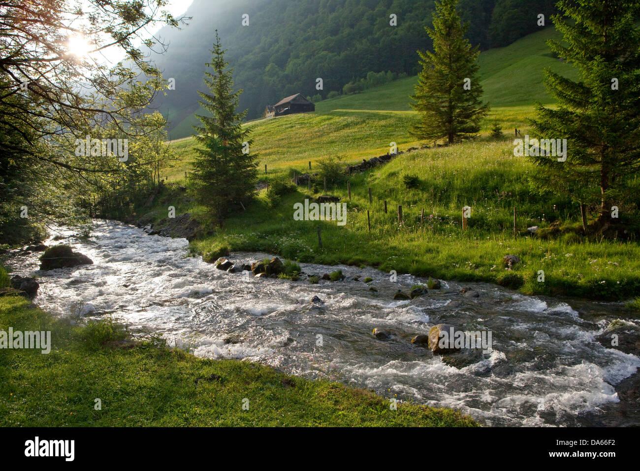 Brook Schwendi, water meadows, mountain, mountains, spring, canton, Appenzell, Innerroden, Appenzell area, Alpstein, - Stock Image