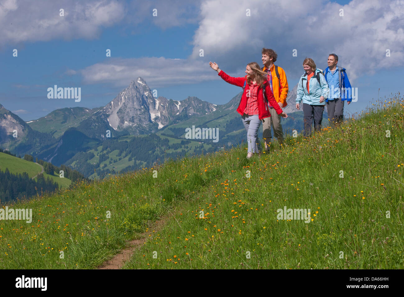 Traveller, Saanenland, Gstaad, canton, Bern, mountain, mountains, couple, Couples, summer sport, footpath, walking, - Stock Image