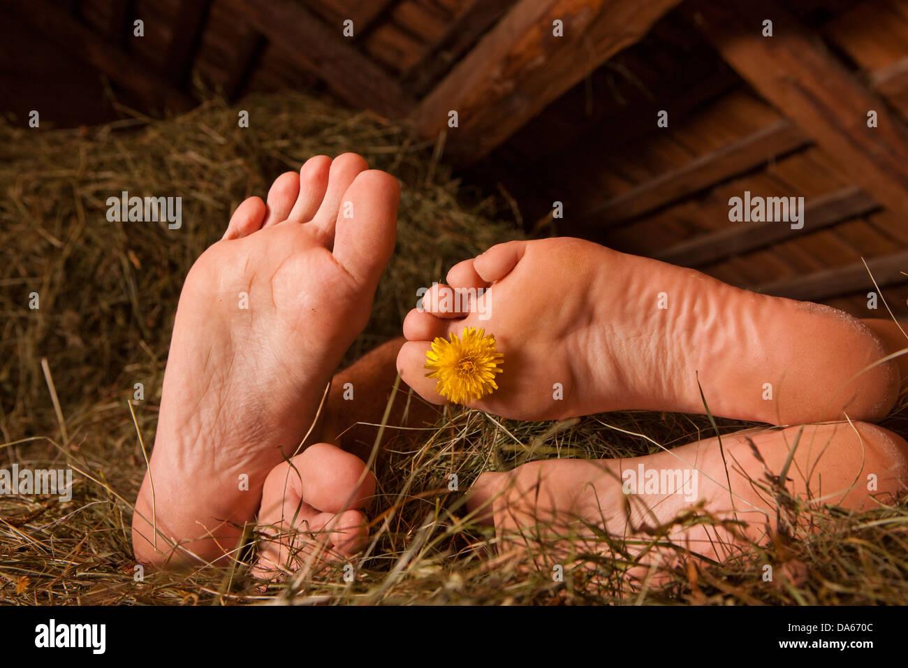 Couple, alpine hut, sleeping, hay, mountain, mountains, canton, Bern, Bernese Oberland, agriculture, holidays, farm, - Stock Image