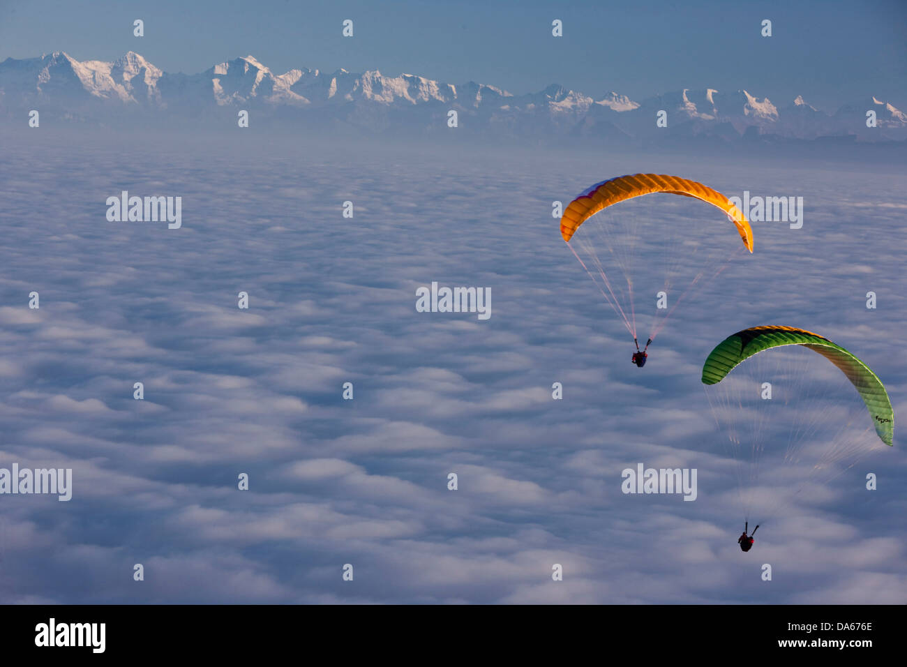 Paraglider, paragliding, sea of fog, fog, Bernese, Alps, autumn, canton, Bern, mountain, mountains, Bernese, Alps, Stock Photo