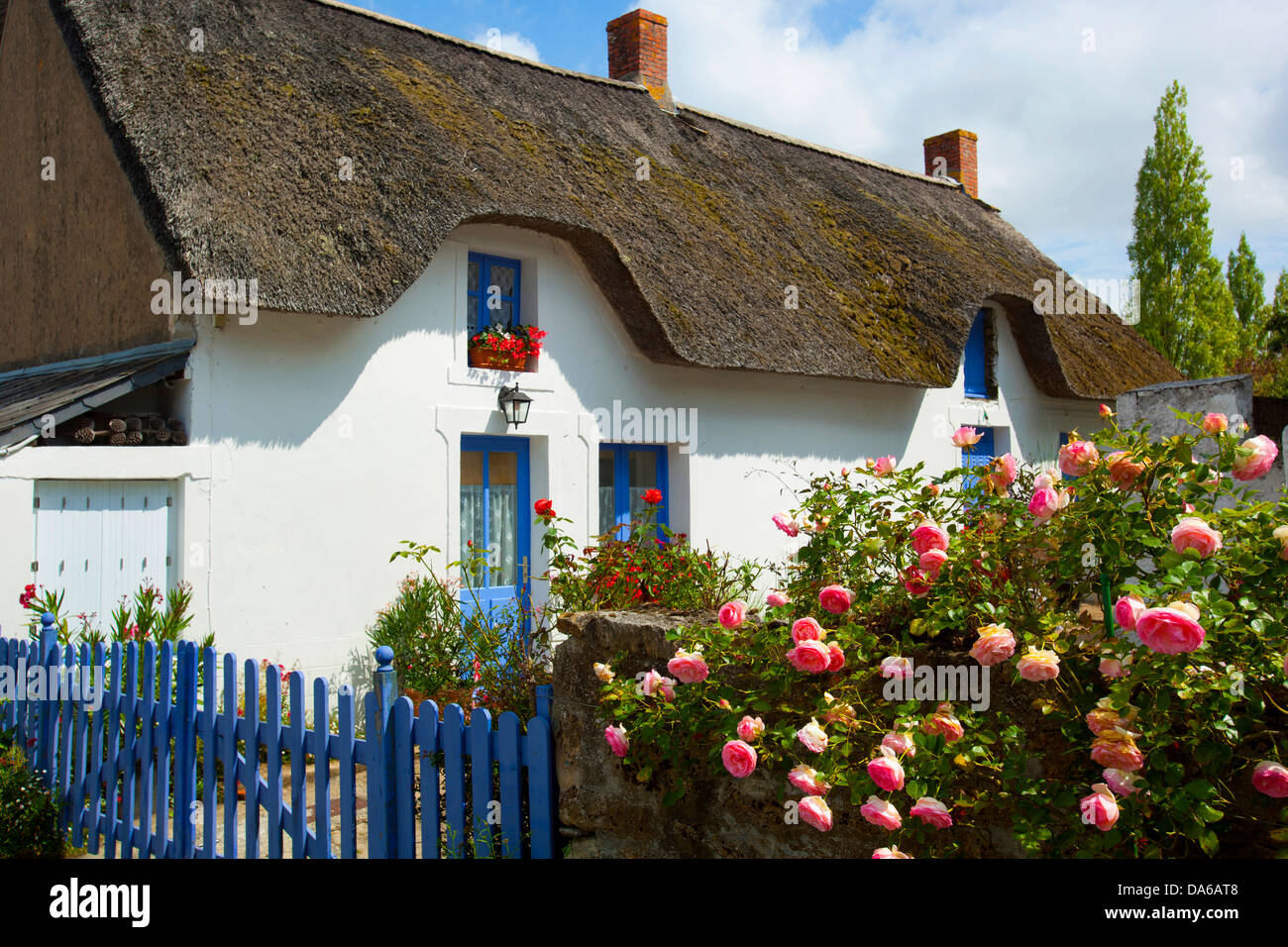 Saint Joachim, France, Europe, Brittany, department Loire-Atlantique, house, home, garden, roses, straw roof Stock Photo