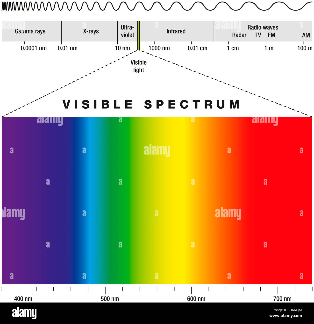 electromagnetic spectrum and visible light stock photo 57920876 alamy