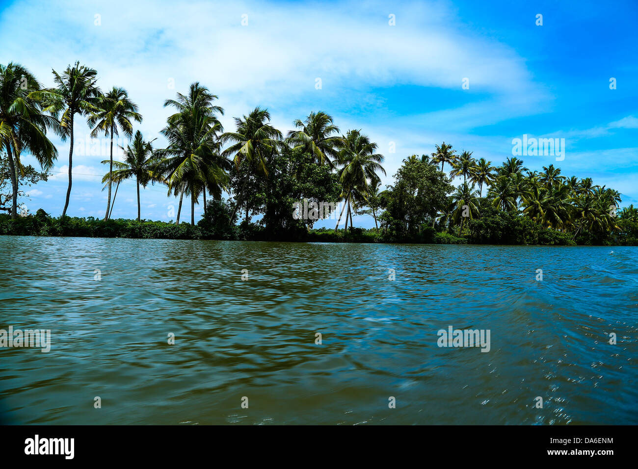 Serenity of backwaters - Stock Image