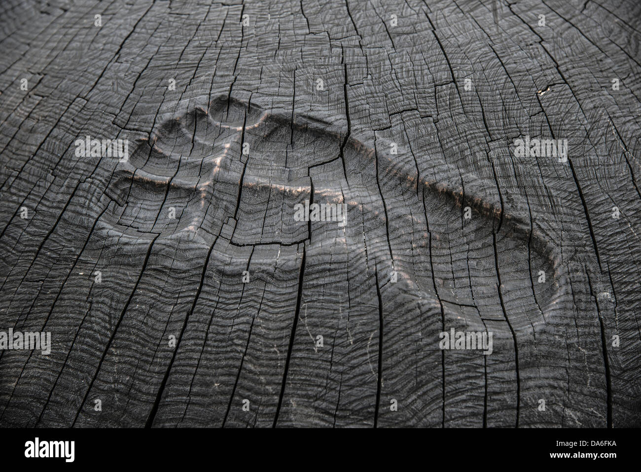 Footprint carved in wood on the pier - Stock Image