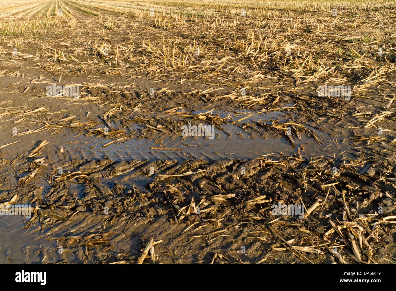 Tyre tracks on a muddy field, England, UK - Stock Image