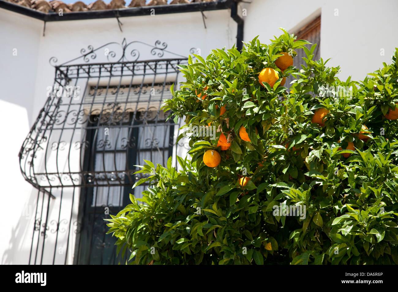Ronda Spain Malaga Andalucia Stock Photo