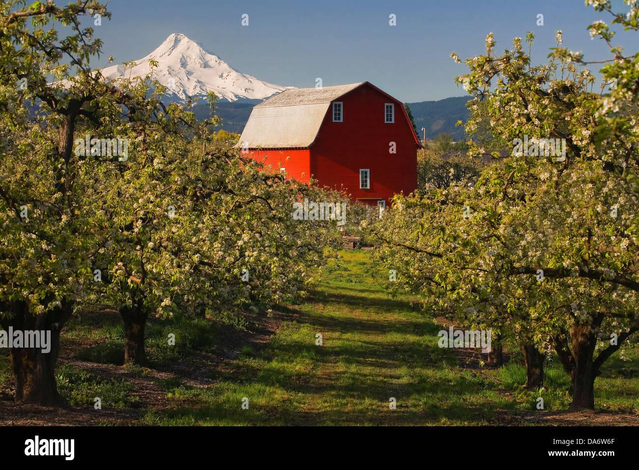 United States Farms