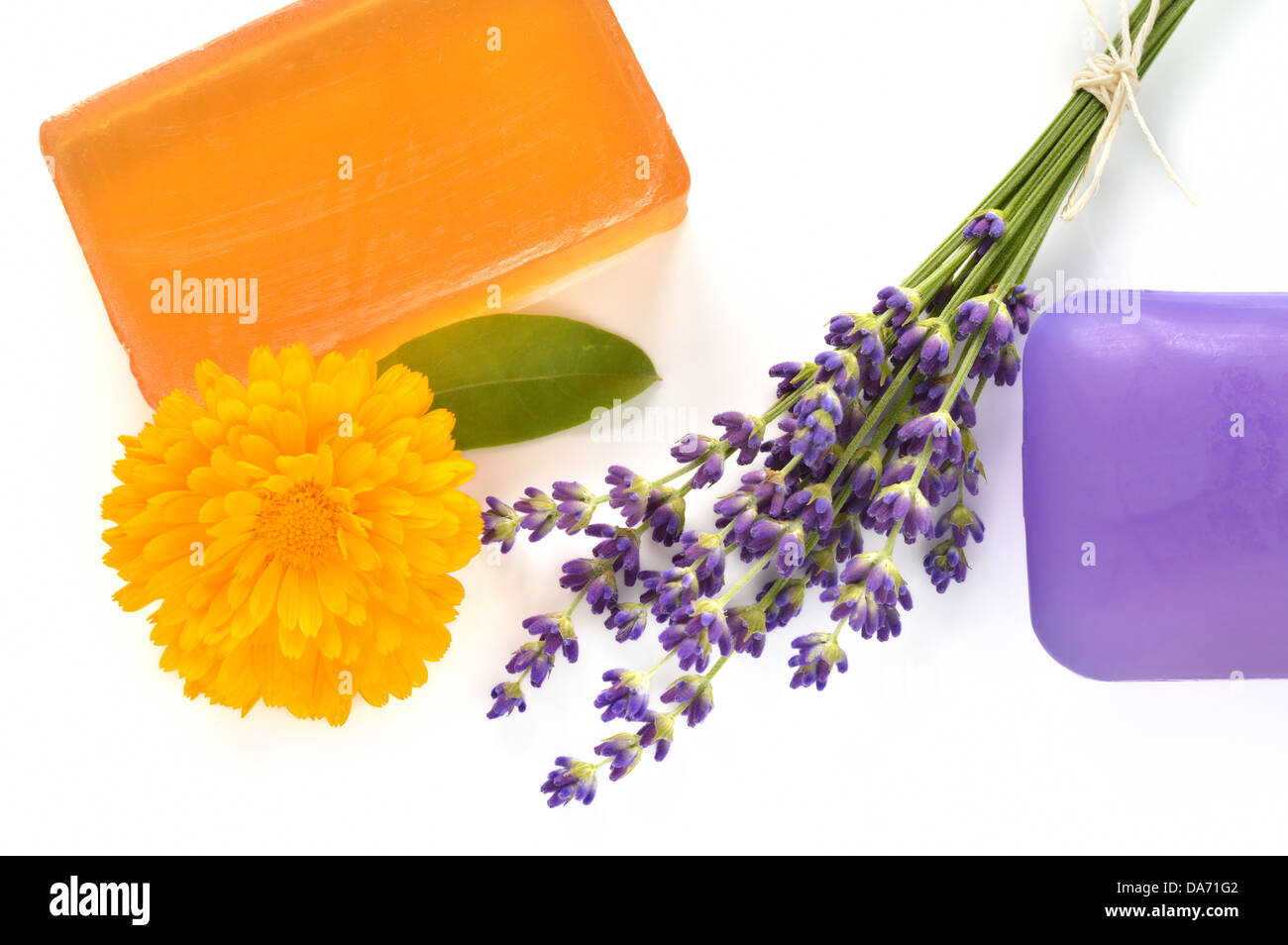 Handmade glycerin soaps with flowers on white background. Natural beauty care - lavender and marigold (Calendula - Stock Image