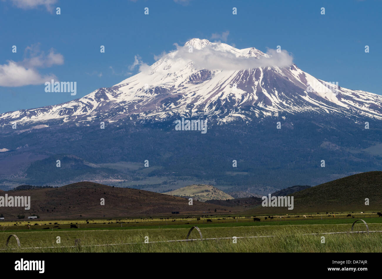 Grenada California United States.  View of Mt Shasta showing irrigation equipment and pasture fields Stock Photo