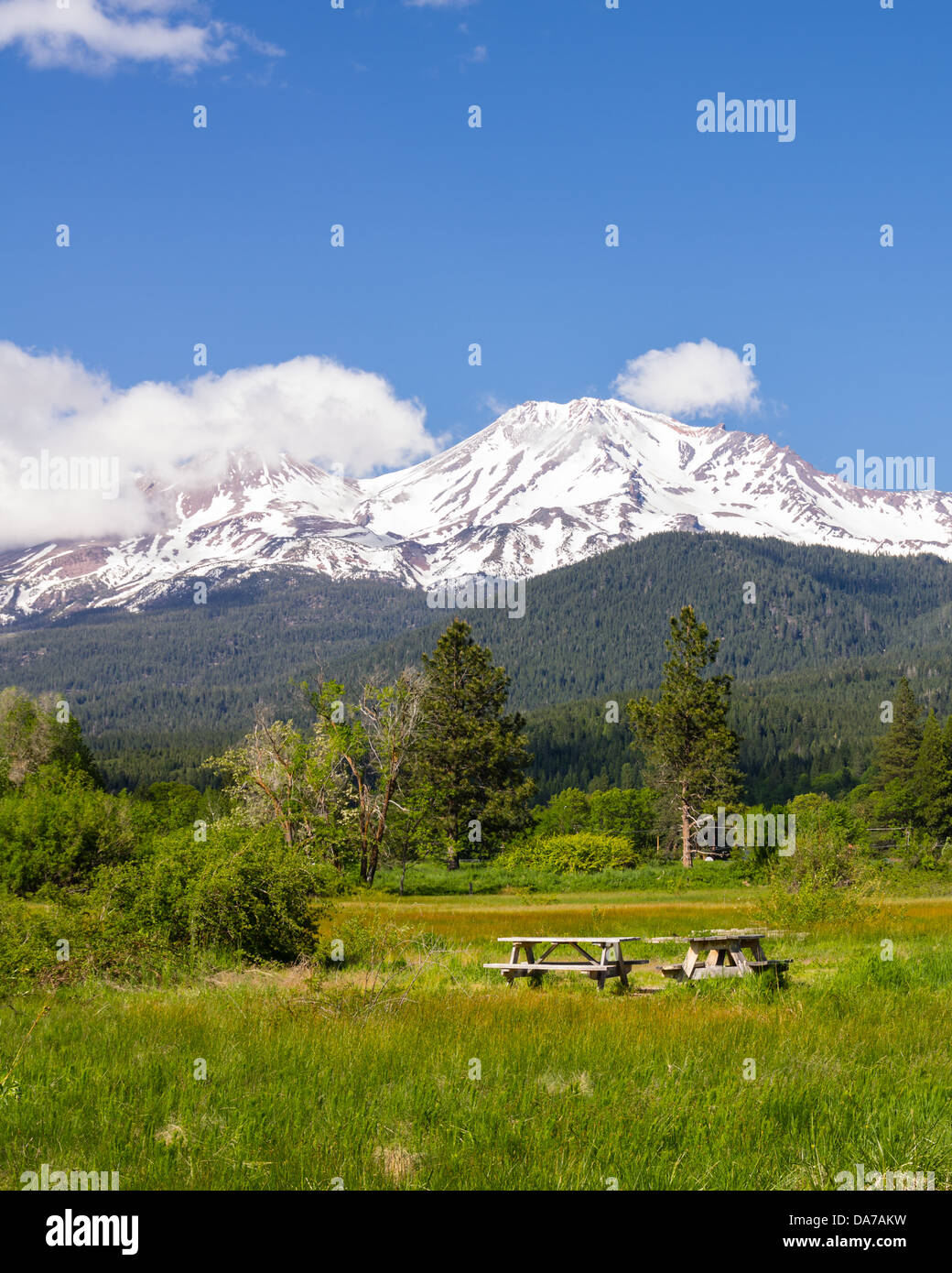 Mount Shasta California United States.  View of Mt Shasta showing picnic tables in a park - Stock Image