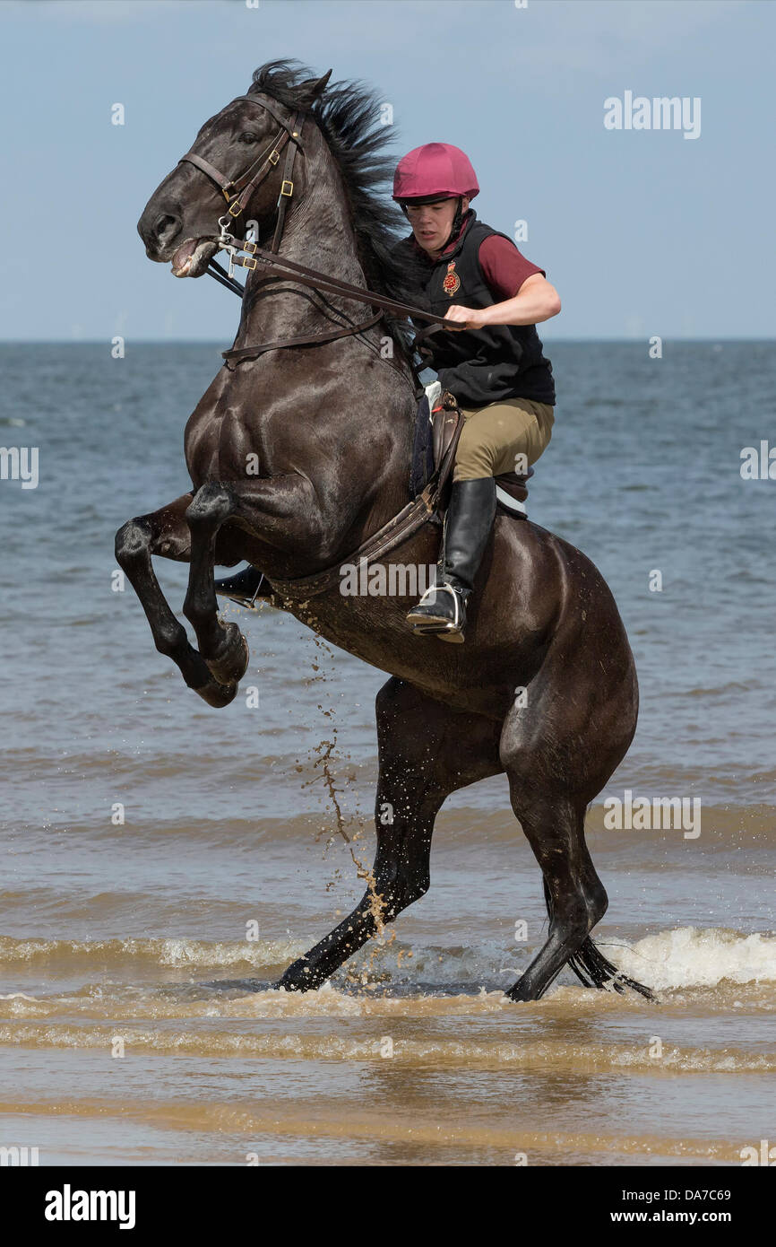 Holkham, Norfolk, UK. 4th July, 2013. The Household cavalry - A soldier of the  Lifeguards riding Warlord on Holkham - Stock Image