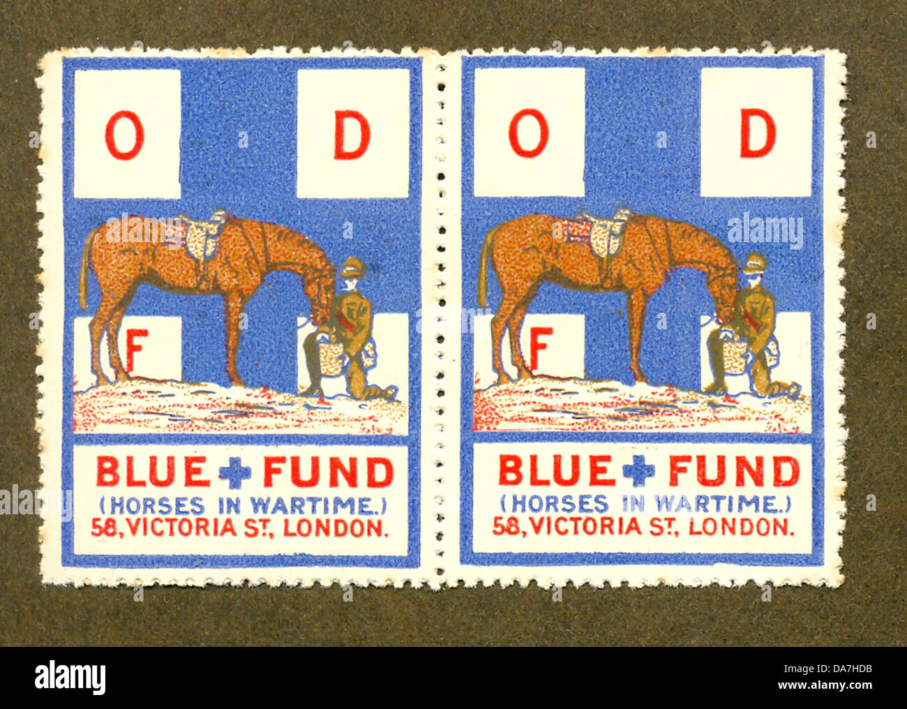 World War One Blue Cross charity sticker for army horses - Stock Image