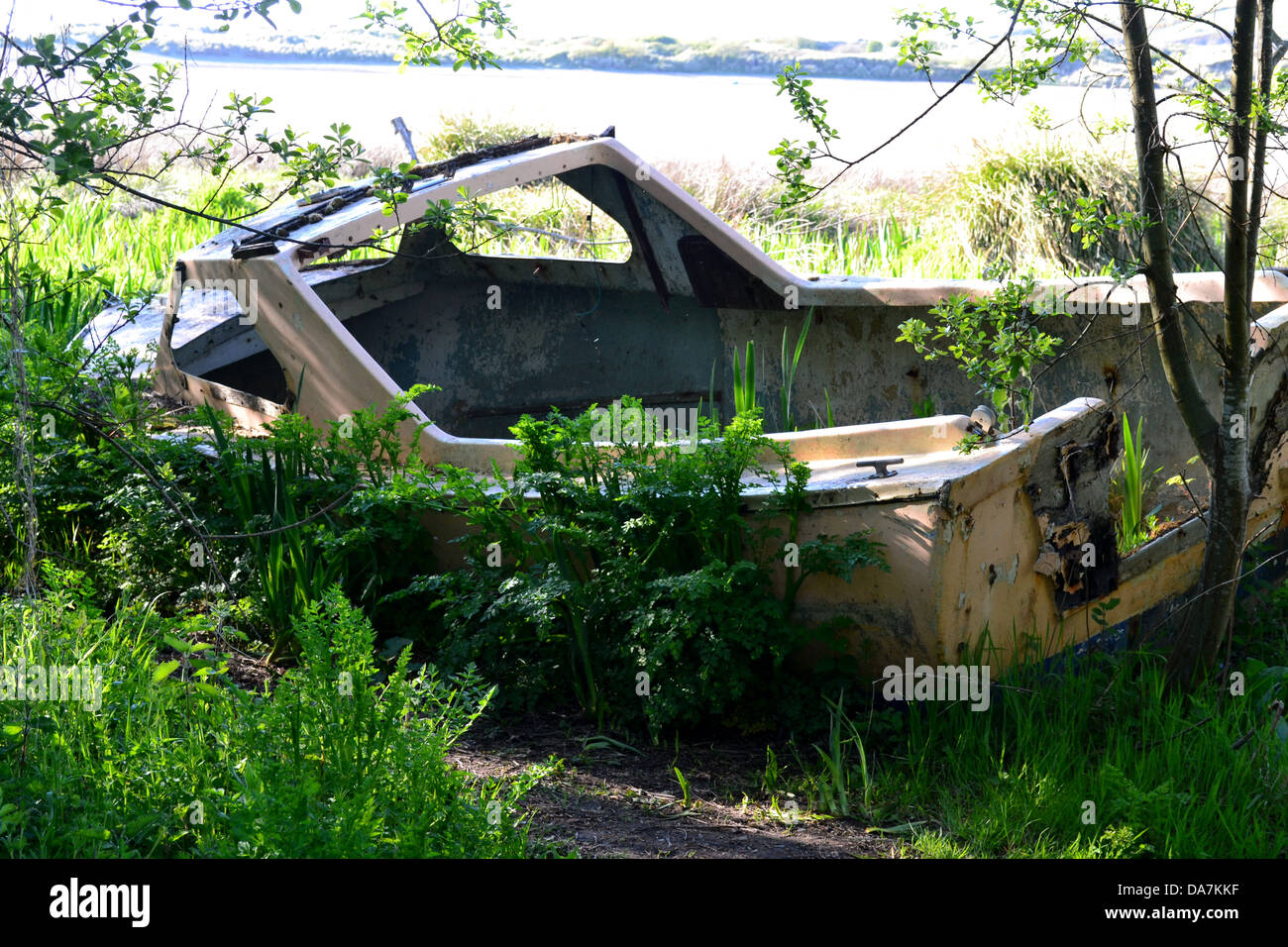 Abandoned and weathered boat, overgrown with weeds and wildflowers on the bank of an Estuary - Stock Image