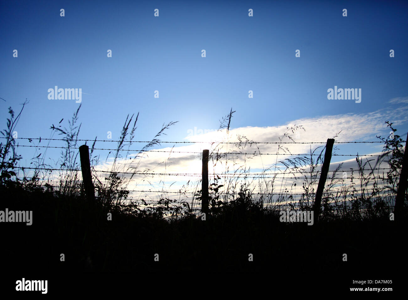Barbed wire fence silhouetted against a blue sky and clouds - Stock Image
