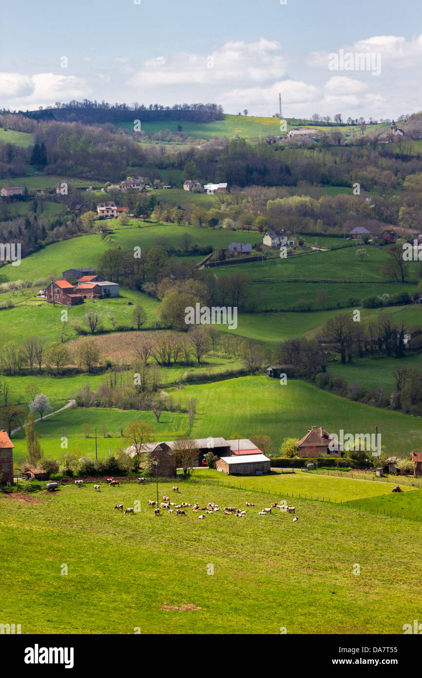 Bucolic landscape with hilly pastures, farmhouses and cows grazing in Midi-Pyrenees region of France - Stock Photo