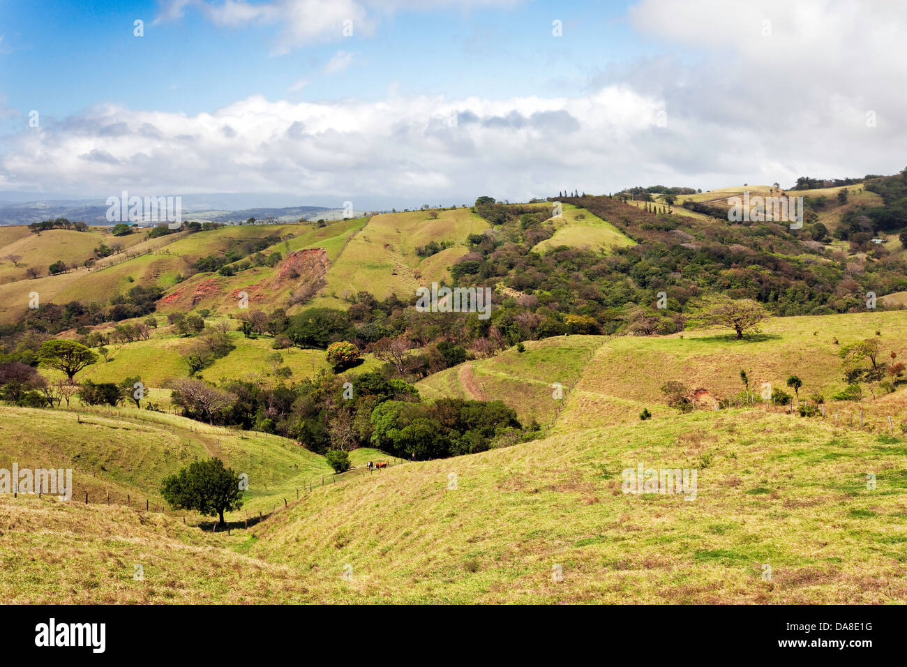 Scenic Costa Rican Countryside - Stock Image