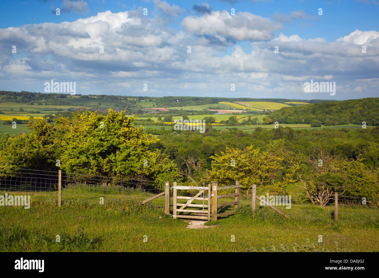 Upper Gade Valley in the Chilterns From Ivinghoe Hills Beds, Herts, Bucks borders Summer - Stock Image