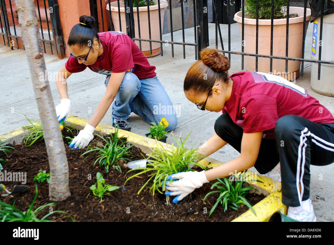 Hispanic community service volunteers - Stock Image