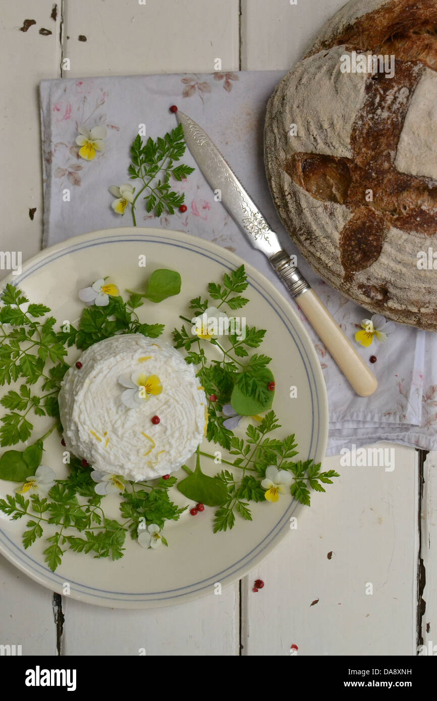 Artisan cheese with chervil and edible flowers with a sourdough bread distressed white wood - Stock Image