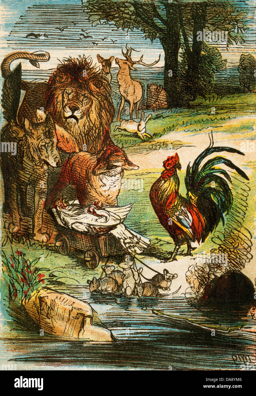 Death of a Chicken, from a Berlin edition of Grimms' Fairy Tales, 1865. Original color illustration - Stock Image