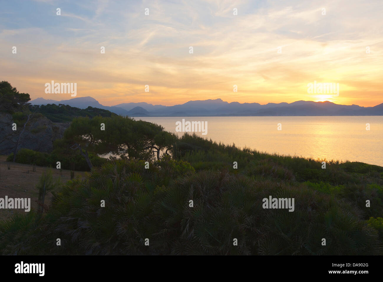 Balearic Islands, Majorca, Mallorca, Spain, Europe, outside, Alcudia, coast, seashore, coasts, seashores, coastal - Stock Image
