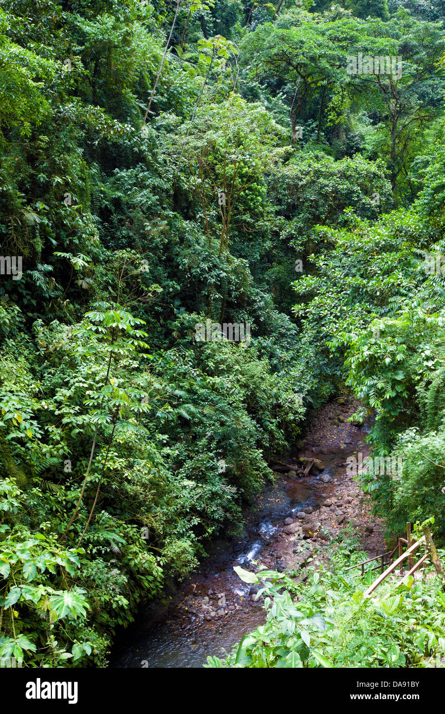 Rainmaker Conservation Project, Costa Rica - Stock Image