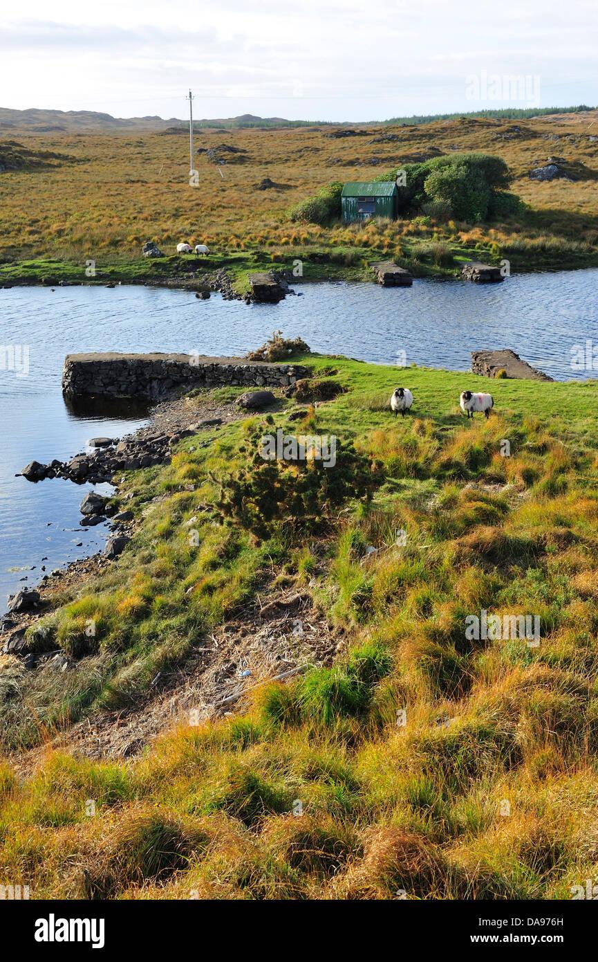 EU, ROI, Connemara, County Galway, Europe, European Union, Exterior, Ireland, Irish, Lake, Outdoor, Outside, Connacht, - Stock Image