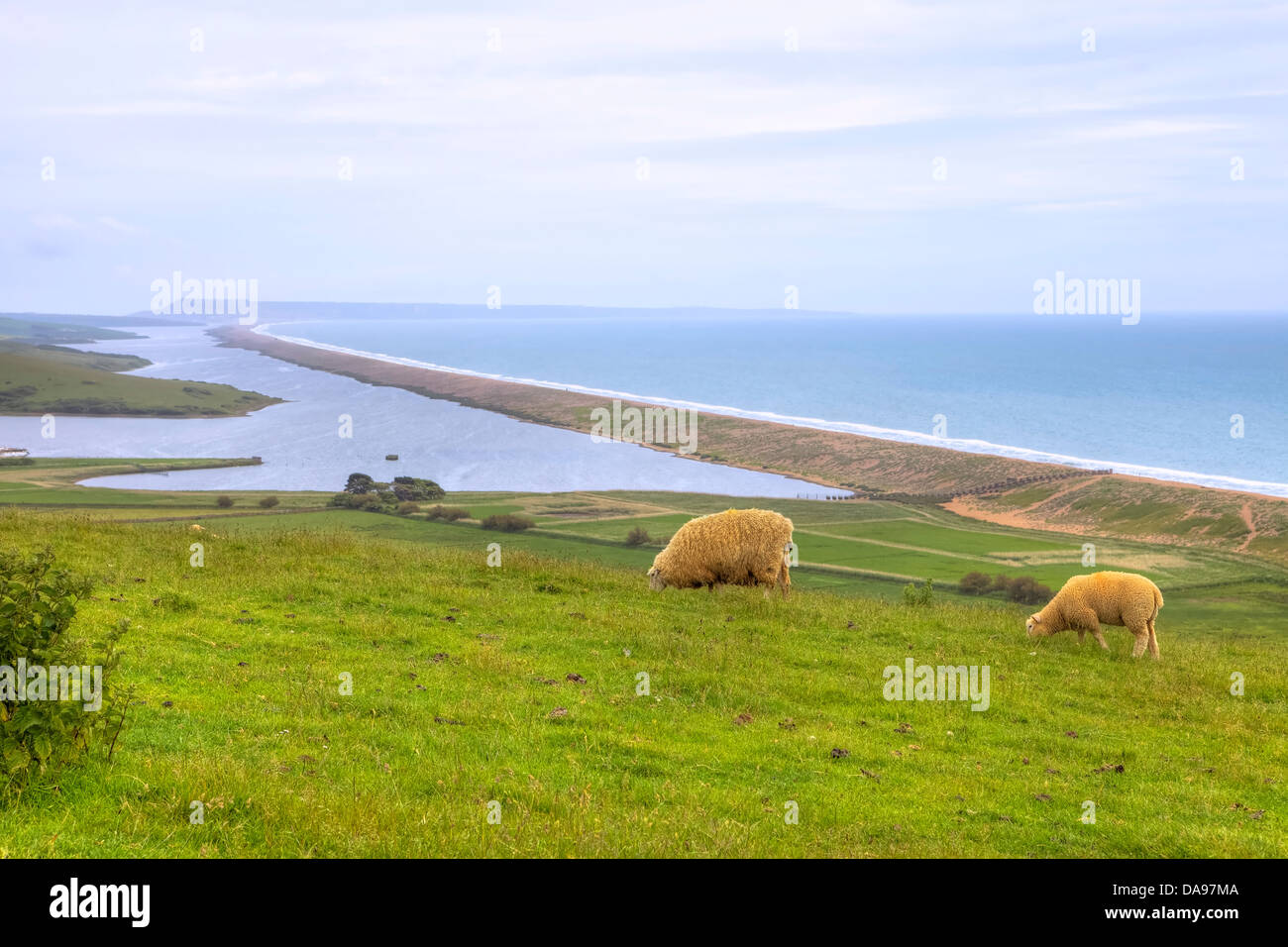 Chesil Beach and the fleet near Abbotsbury, Dorset, United Kingdom - Stock Image