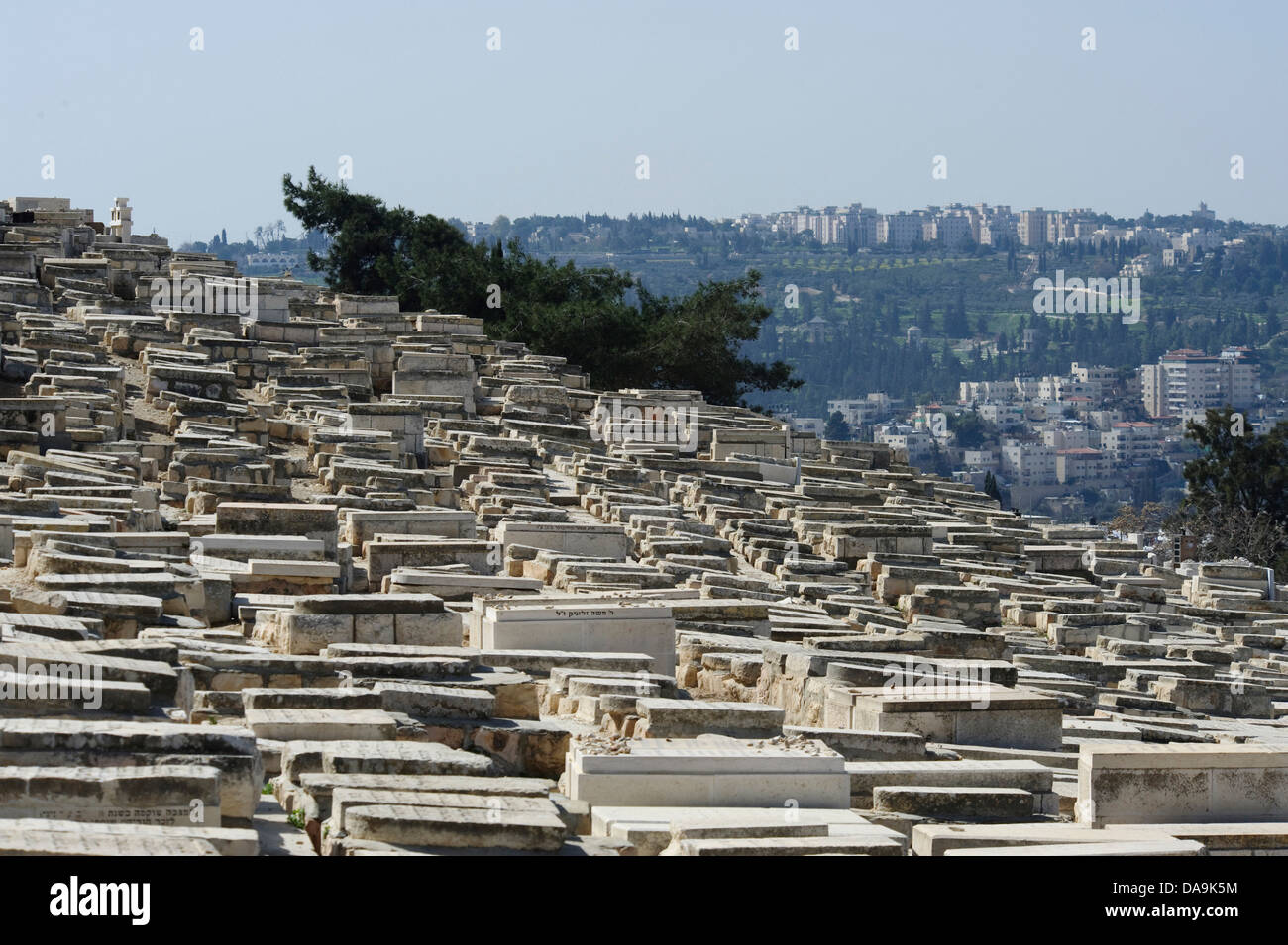 Cemetery, Israel, Jerusalem, Middle East, Near East, Jewish, Mount of Olives, graves, religion, Jew, Jewish, Stock Photo