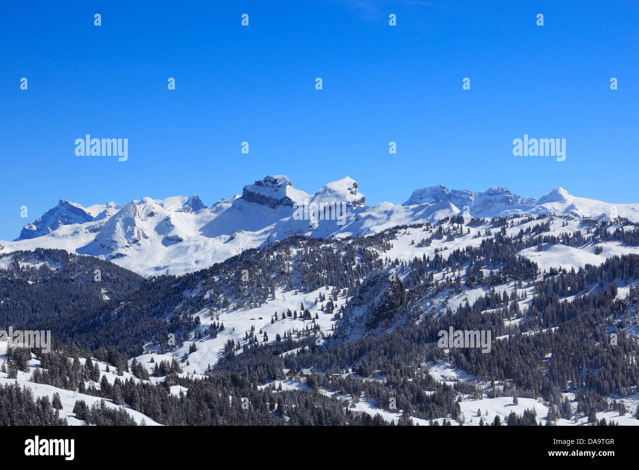 Alps, Alpine wreath, Alpine, panorama, view, mountain, mountains, trees, spruce, spruces, mountains, summits, peaks, - Stock Image