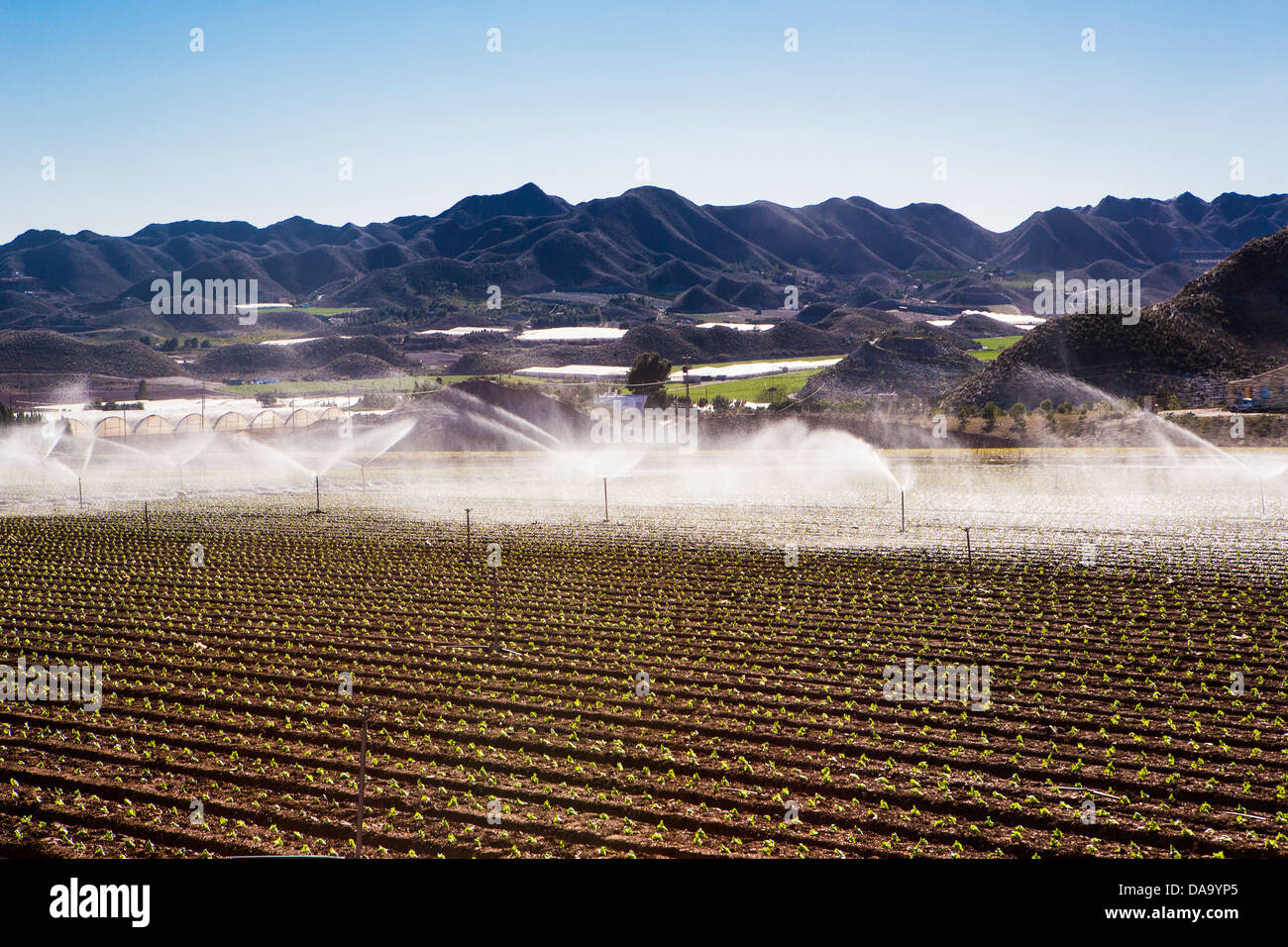 Spain, Europe, agriculture, automatic, dry, field, mountain, Murcia, range, watering, irrigation - Stock Image