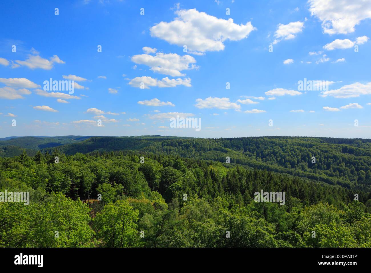 Waldlandschaft, Blick vom Hermannsdenkmal zum Lippischen Wald, Detmold, Teutoburger Wald, Nordrhein-Westfalen Stock Photo