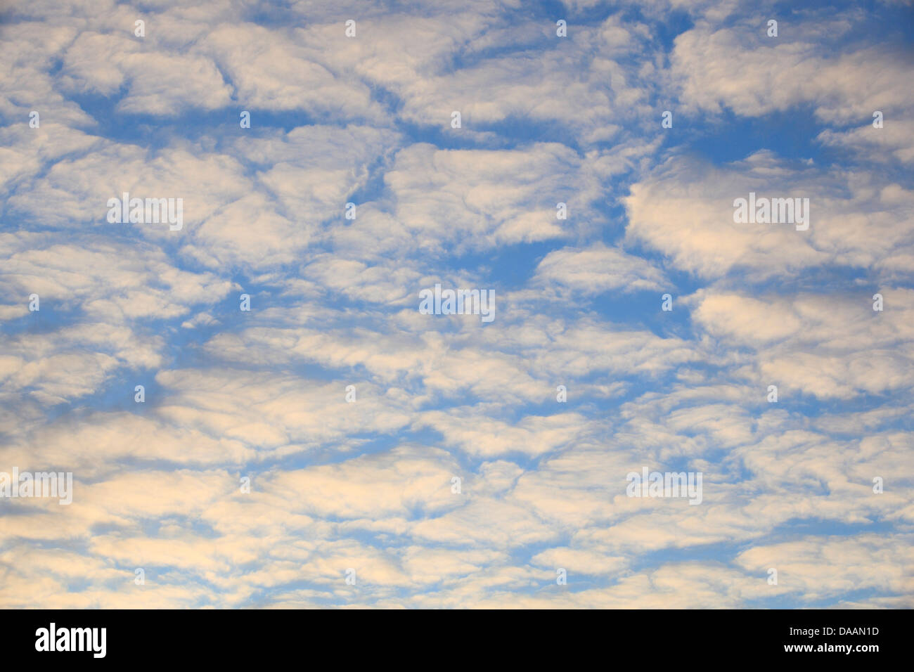 Sky, air, width, weather, clouds, cloud formation blue, blue sky, white, wind, move - Stock Image