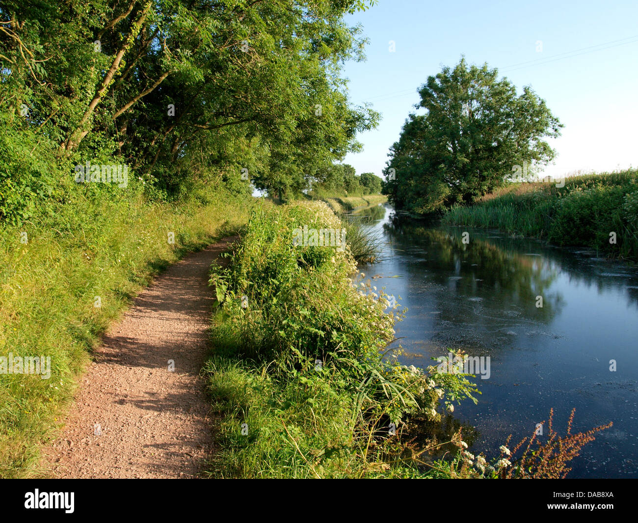 Towpath on The Grand Western Canal near Sampford Peverell, Devon. UK Stock Photo