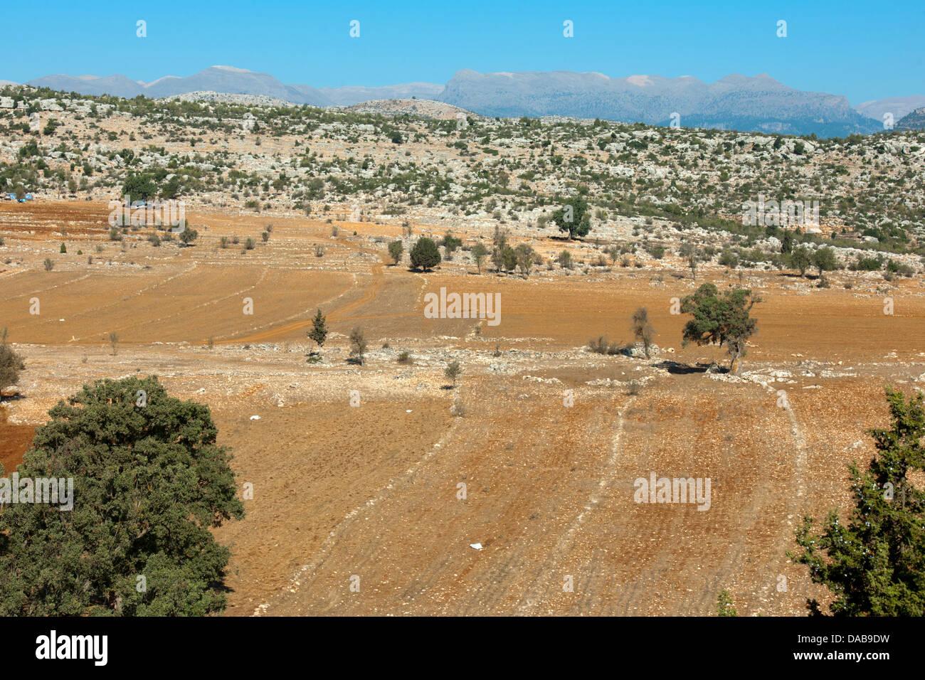 Türkei, Provinz Icel (Mersin), nödlich von Tarsus, karge Landwirtschaft - Stock Image
