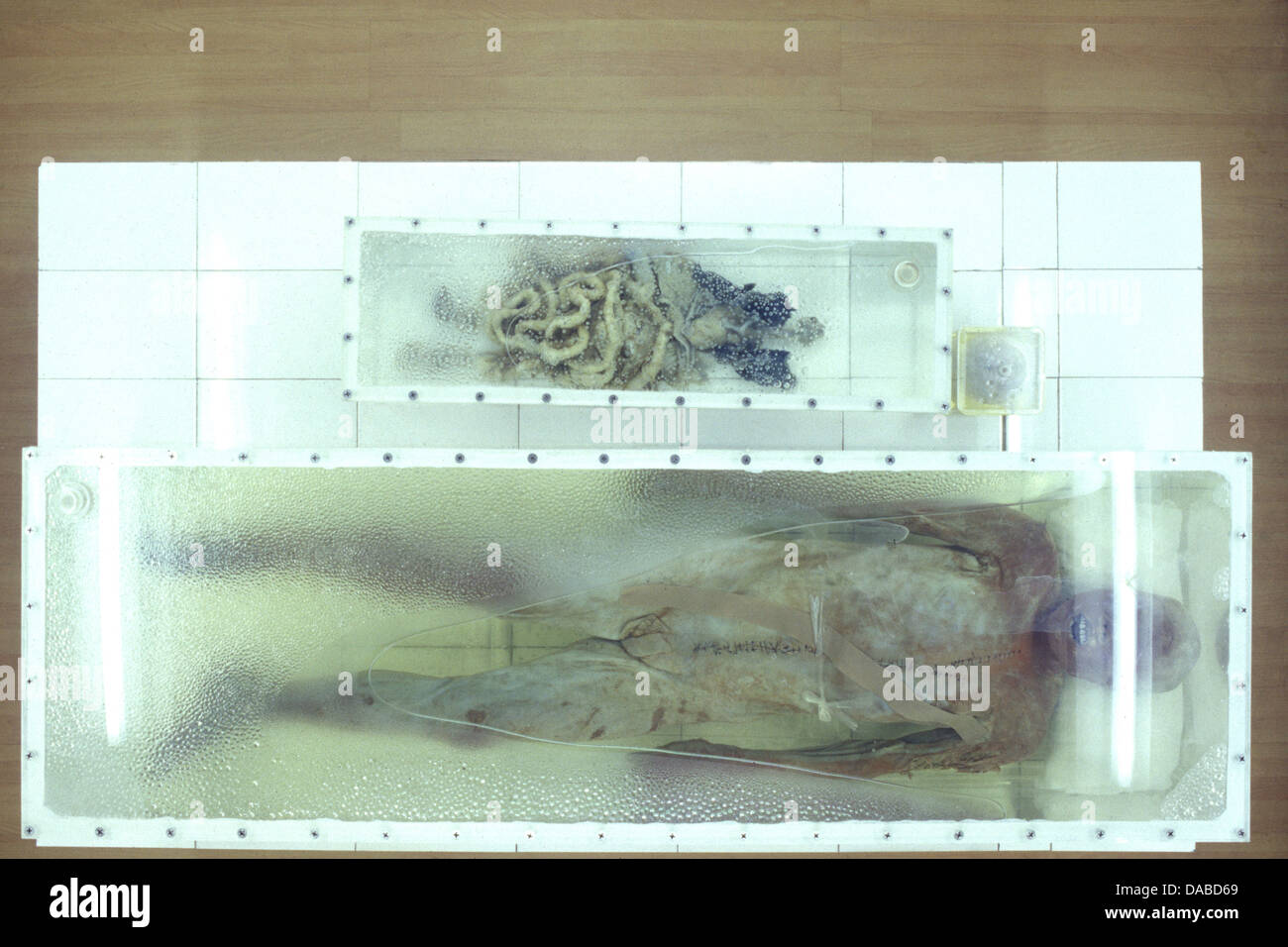 A well preserved male mummy discovered with all parts of the body from the Early Han Dynasty displayed in Jingzhou - Stock Image