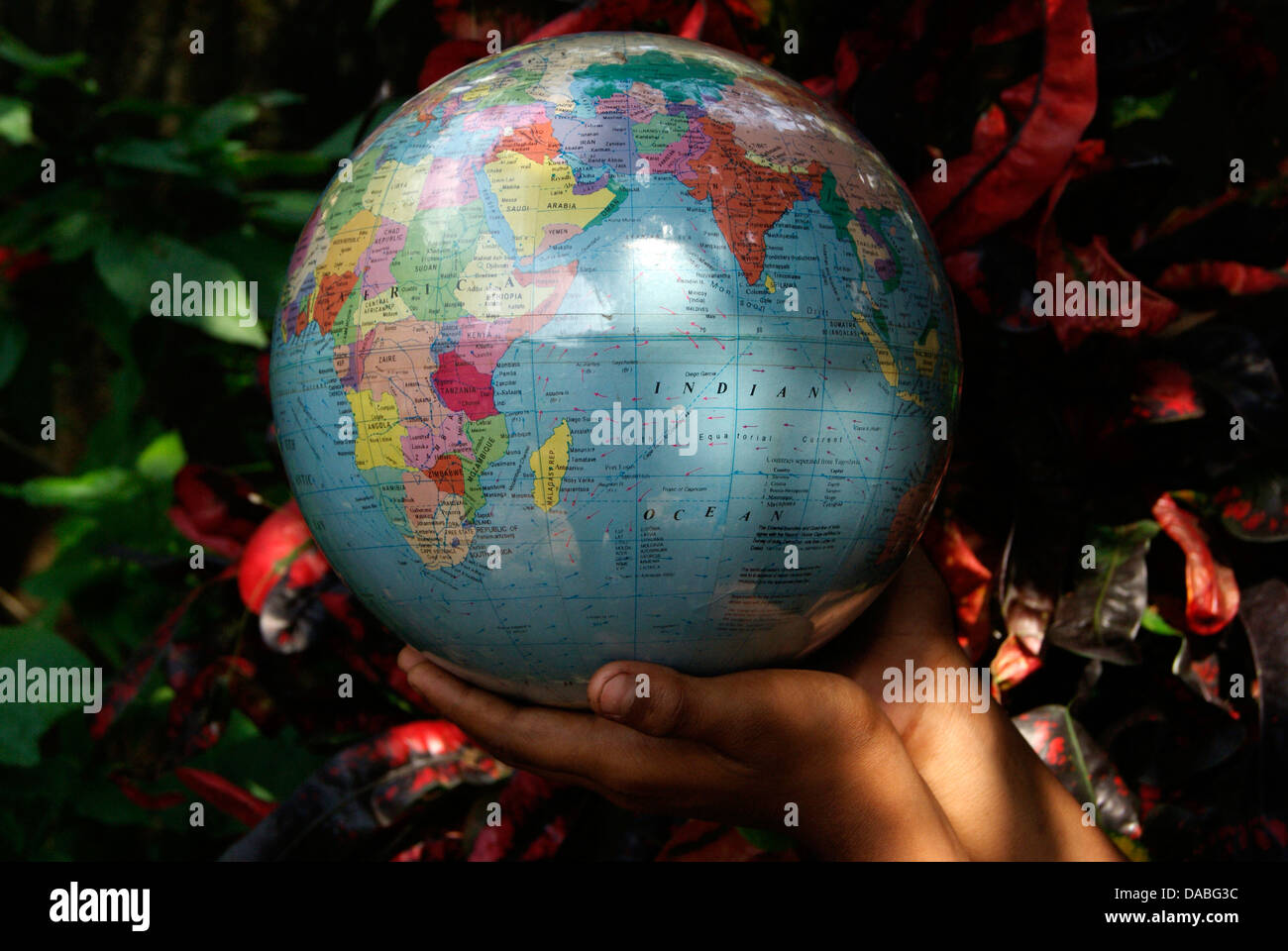 Globe Earth Holding on Hand - Stock Image