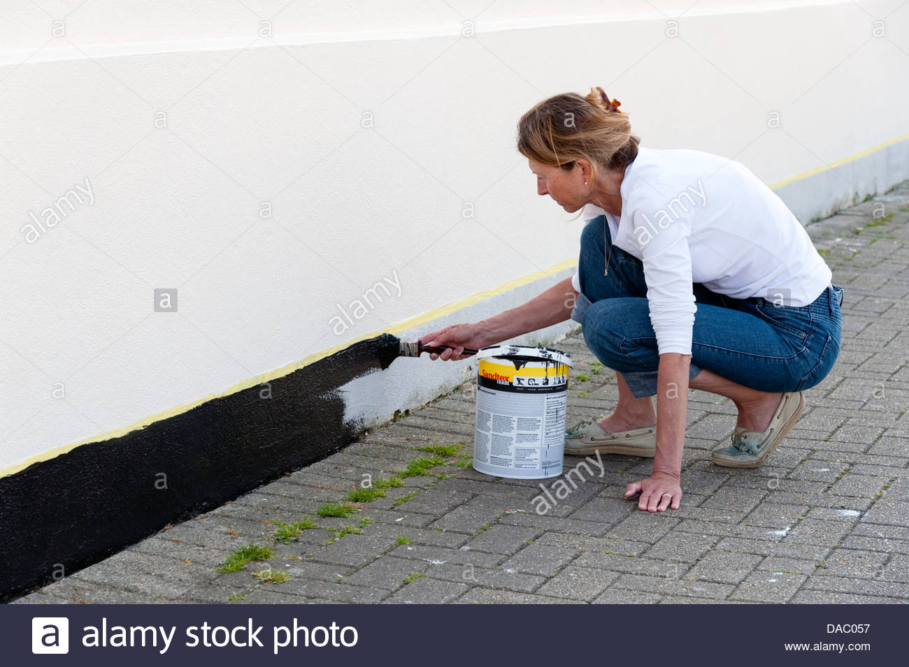 Woman painting an exterior wall, Brixham harbour, Torbay, Devon, UK. - Stock Image