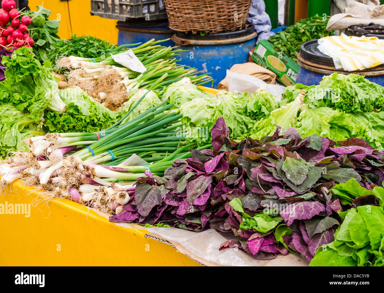 Vegetable stand at a marketplace in Brasov, Romania. - Stock Image