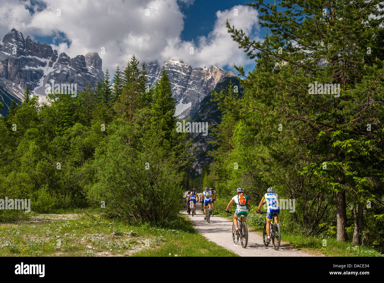 Mountain bikers riding in the Dolomites, Alto Adige or South Tyrol, Italy - Stock Image